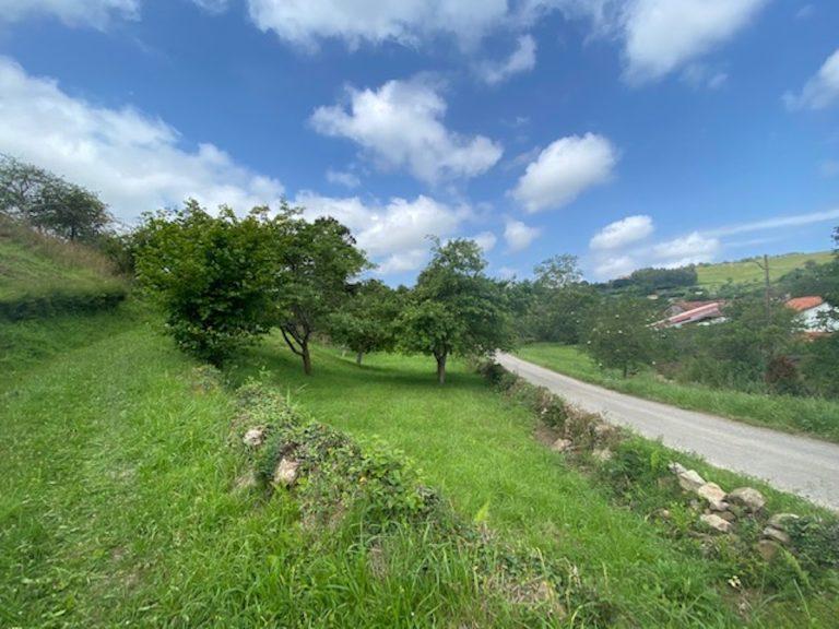 Terreno en Asturias